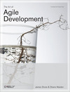 Livre numrique The Art of Agile Development