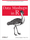 Livre numrique Data Mashups in R
