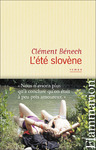 Livre numrique L&#x27;t slovne