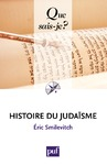 Livre numrique Histoire du judasme