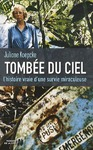 Livre numrique Tombe du ciel