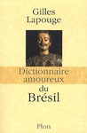 Livre numrique Dictionnaire amoureux du Brsil