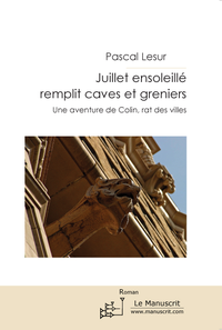 Livre numrique Juillet ensoleill remplit caves et greniers