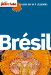Livre numrique Brsil 2010-11