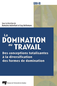 Livre numrique La domination au travail