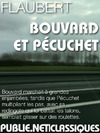 Livre numrique Bouvard et Pcuchet