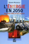 Livre numrique L&#x27;nergie en 2050 - Nouveaux dfis et faux espoirs