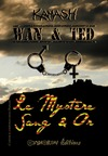 Livre numrique Wan &amp; Ted - Le Mystre Sang &amp; Or
