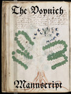 Livre numrique The Voynich Manuscript