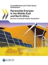 Livre numérique Renewable Energies in the Middle East and North Africa
